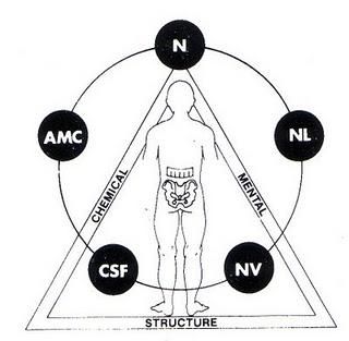 triangolo-della-salute